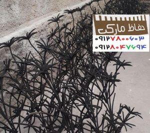 نرده_حفاظ_نخل_مرداب_پرتراکم