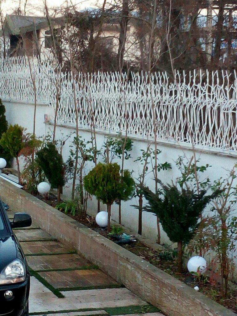 حفاظ شاخ گوزنی در قم