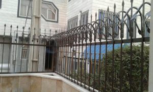 حفاظ شاخ گوزنی در مازندران