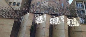 حفاظ شاخ گوزنی در کرمان