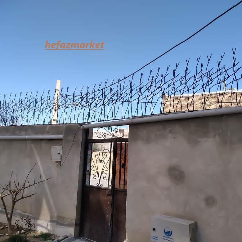شاخ گوزنی بالای دیوار